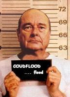 coudflood