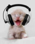 Ljubiteljica mačaka