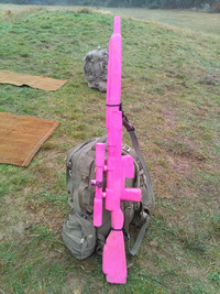 Le tir, les essais, l'entraînement 5546-64