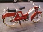 JALLL1950