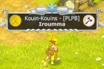 Iroumma