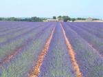 Provence 04