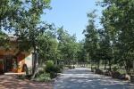 Locations saisonnières dans le Gard 30 917-61