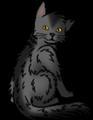 happythecat