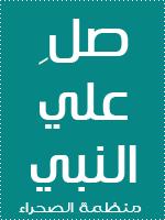 shady mostafa