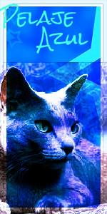 @Estrella Azul