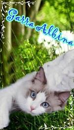 Garra Albina
