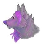 Nightwolf1513