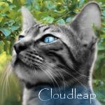 Cloudleap