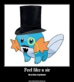 Sir Pokemon