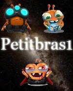 PetitBraS_1