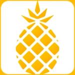 X-TOO-Ananas