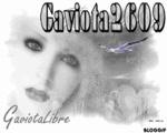 gaviota2609