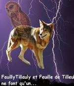 Étoile du Tilleul
