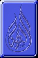 احمد الفنان