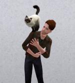 The Sims 3: Дополнения и каталоги 16522-3