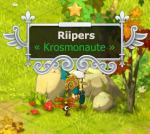 Riipers