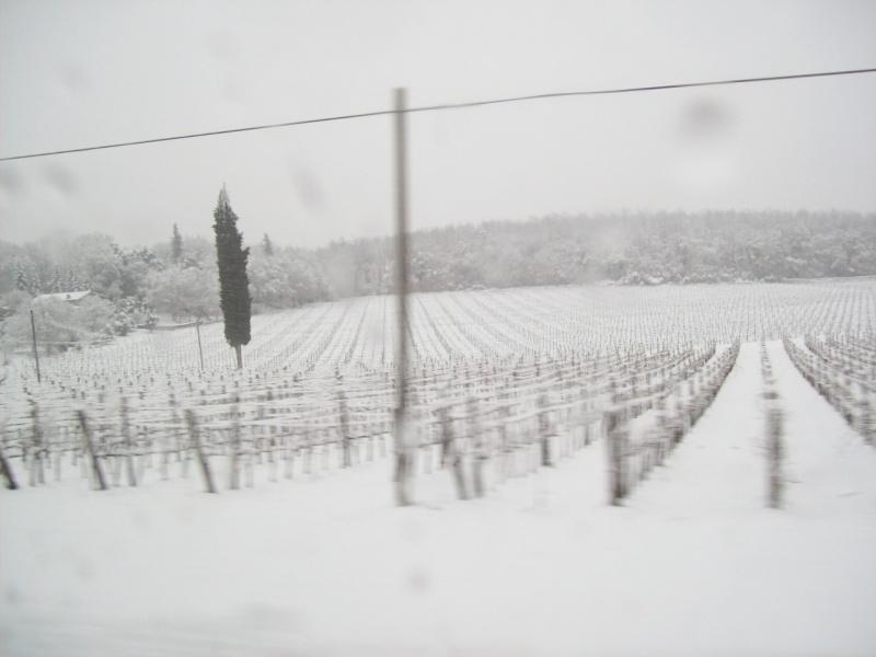 neve 9 marzo 2010