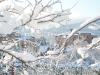 neve 19 dicembre 2010