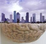 Mental City