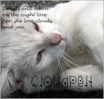 Cloudpelt