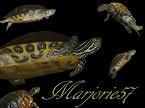 Marjorie57