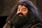 Professor Rubeus Hagrid