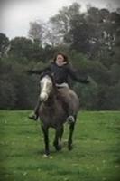 EquusBea.
