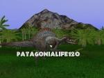 Patagonialife120