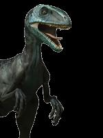 RaptorGoNuts97
