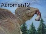 acroman12