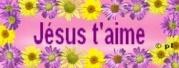 Bénédiction du 28 Juillet  = De quel amour j'aime ta demeure, Dieu de l'univers ! 2570490610