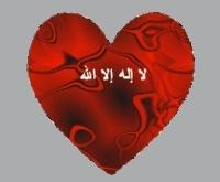 محمد وليد بركة