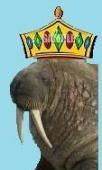 walrusgumboot