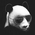 Pandashushu