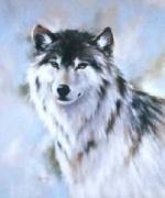 WolfDex