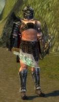 romain le bourrin