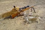 SniperRen