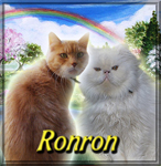 Ronron