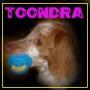toondra