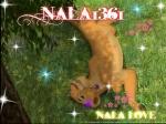 Nala1361