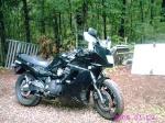 graybeard_biker