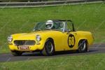 Yellow Midget