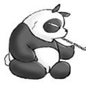 Pandawashua