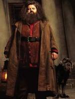 Vagrid