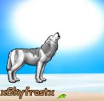 xSkyfrostx