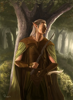 The Wooden Knight