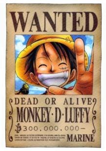 MONKEY~D~LUFFY
