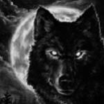 XL Wolf