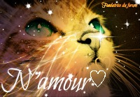 N'amour♡